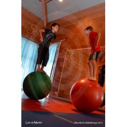 Ateliers Cirque Pédagogiques